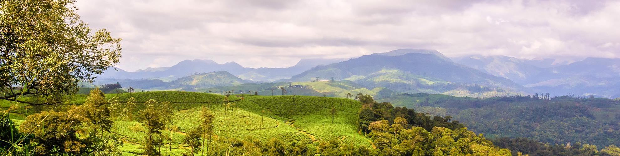 جمهورية الكونغو الديمقراطية - زائير - الكونغو الديمقراطية ...